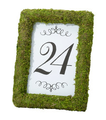 Moss 4x6 Table Frame
