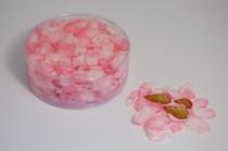 Flower Petal Box 554 x Delphinium Pink
