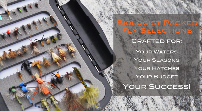 biologist-crafted-fly-selections.jpg