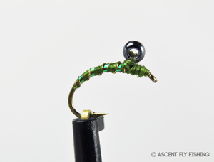The legend of the midge master part ii ascent fly fishing for Ascent fly fishing