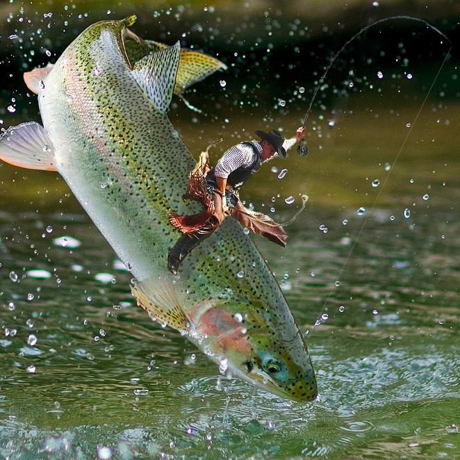 The geometry of landing big fish part ii ascent fly fishing for Ascent fly fishing