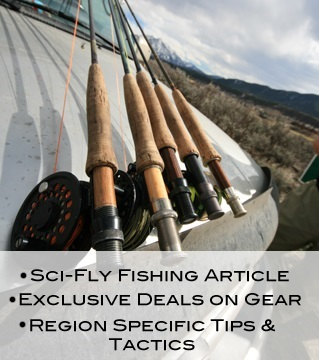 Ascent fly fishing for Ascent fly fishing