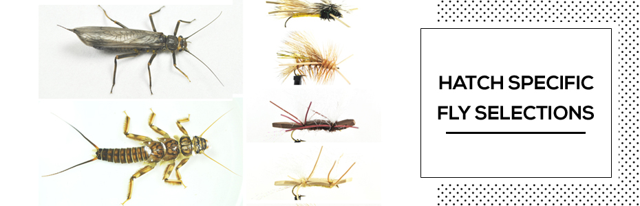 Hatch Specific Fly Selections