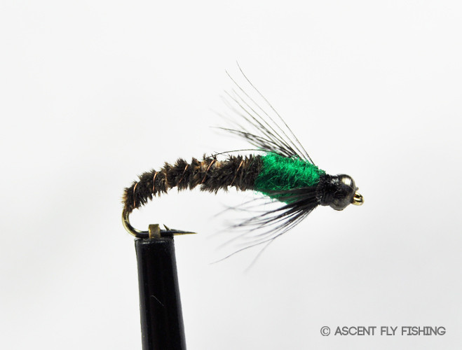 Beadhead cased caddis ascent fly fishing for Ascent fly fishing