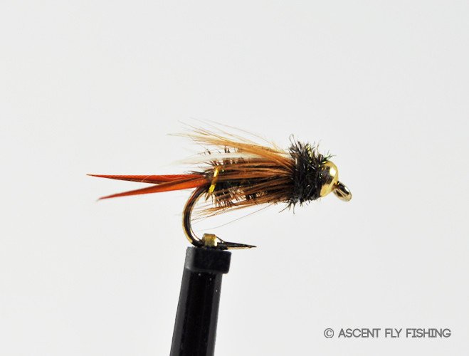 beadhead prince nymph ascent fly fishing