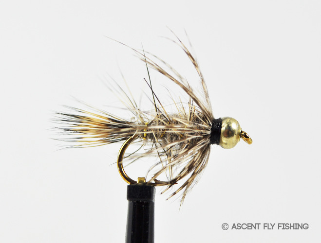 Beadhead soft hackle hare 39 s ear ascent fly fishing for Ascent fly fishing