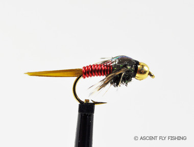 Copper john ascent fly fishing for Ascent fly fishing