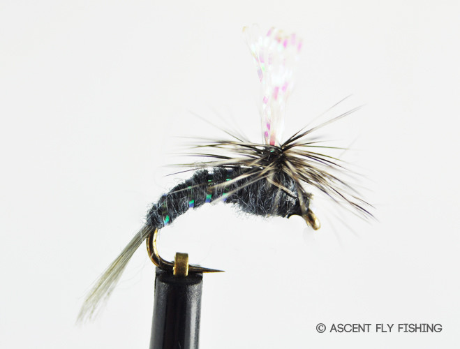 Parachute callibaetis emerger ascent fly fishing for Ascent fly fishing