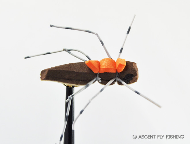 Foam hopper ascent fly fishing for Ascent fly fishing