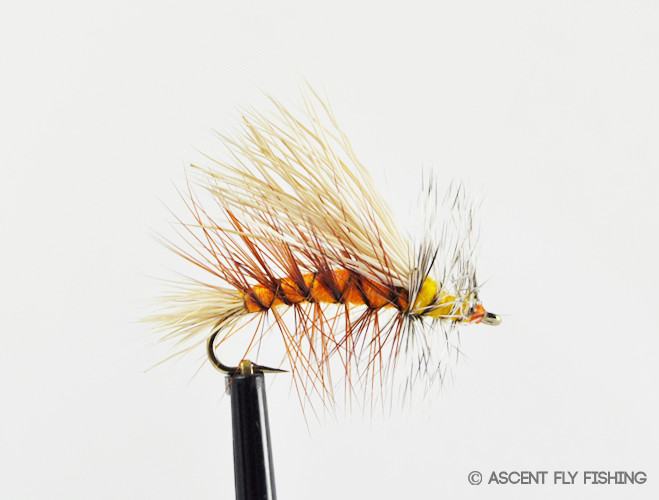 Stimulator ascent fly fishing for Ascent fly fishing