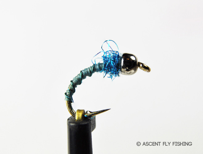 Deep poison tung ascent fly fishing for Ascent fly fishing