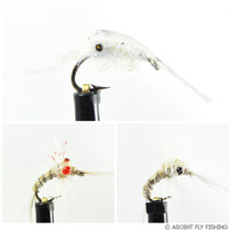 Mysis Shrimp Selection