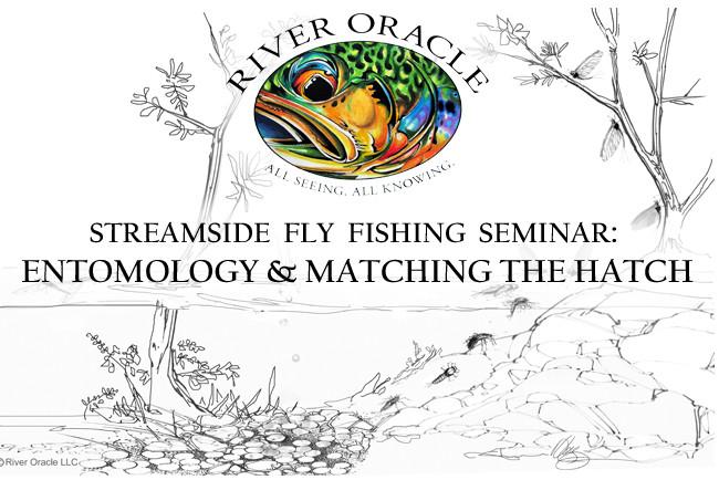 Streamside fly fishing seminar entomology matching the for Fly fishing entomology
