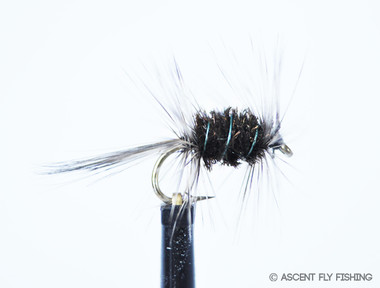 Grey ugly ascent fly fishing for Ascent fly fishing