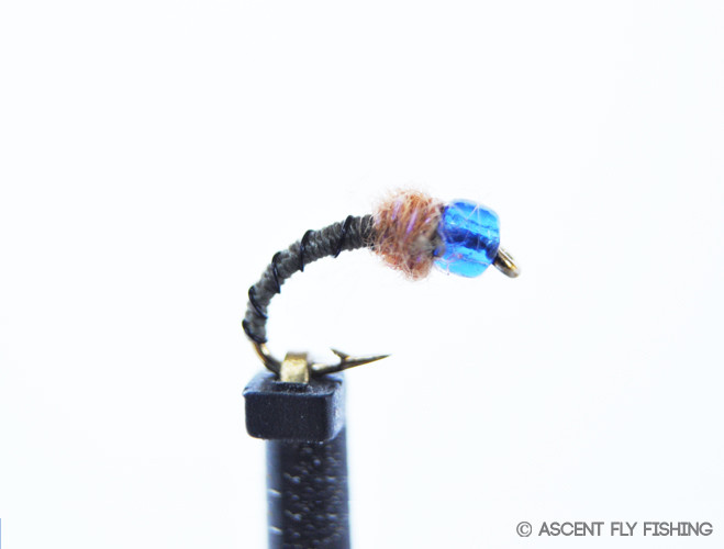 Reef pal ascent fly fishing for Ascent fly fishing
