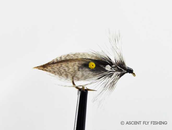 Hornberg ascent fly fishing for Ascent fly fishing