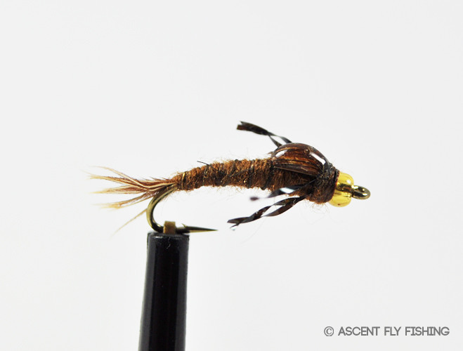 Matt 39 s baetis ascent fly fishing for Ascent fly fishing