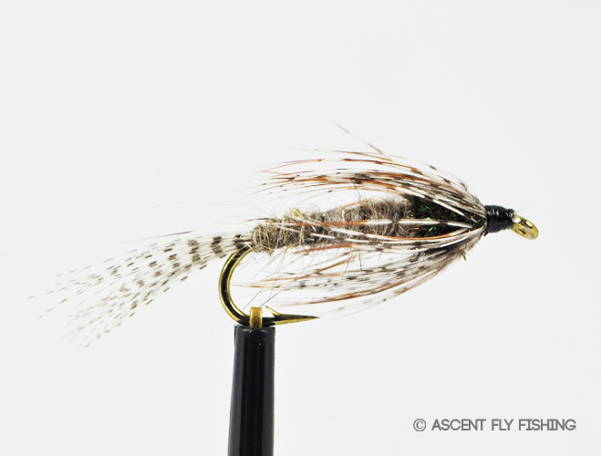 Ap nymph ascent fly fishing for Ascent fly fishing