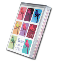 Candy Cardinal Assorted Notecards   Boxed set of 8