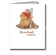 So Much Seed, So Little Time Cards Boxed Set of 8