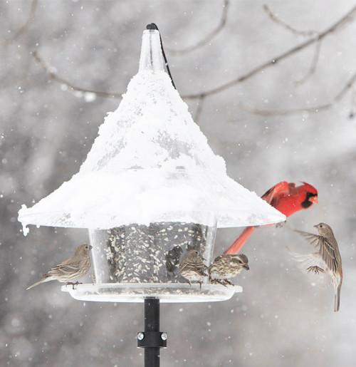 skycafe bird feeder pole mounted - Squirrel Proof Bird Feeders