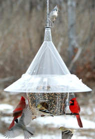 Mandarin Bird Feeder A la Carte - includes dividers