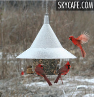 The BEST Cardinal Squirrel Proof Mandarin Birder Feeder