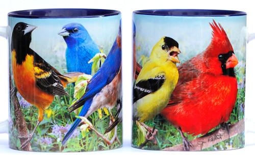 Colorful Birds Mug