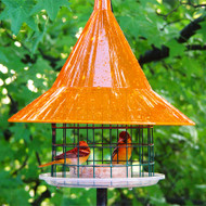 Sunset Orange SkyCafe Oriole Bird Feeder