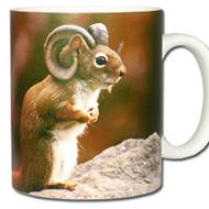 Ram Squirrel *Arietisciurus cornutus Mug