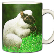 Sheep Squirrel *Ovisciurus pacificus Mug