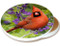 Summer Cardinal Sandstone Ceramic Coaster | Image shows front and cork back