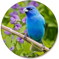 Summer Indigo Blue Bunting Sandstone Ceramic Coaster | Front