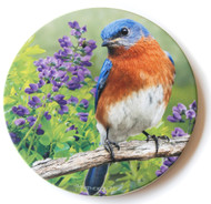 Summer Bluebird Sandstone Ceramic Coaster  | Front