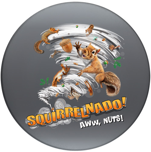 Squirrelnado! Aww Nuts Sandstone Ceramic Coaster | Front