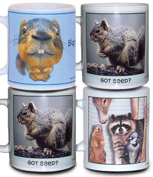Squirrel Mugs - Set of 4