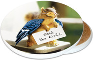 Feed the Birds Sandstone Ceramic Coaster | Image shows front and cork back