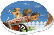 Bird Seed of Bust SandstoneCeramic Coaster | Cannon Squirrel | Image shows front and cork back