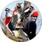 Woodpecker Sandstone Ceramic Coaster | Front
