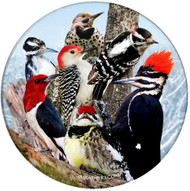 Woodpecker Sandstone Ceramic Coaster | Front
