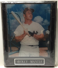 New York Yankees Mickey Mantle Wall Plaque Baseball