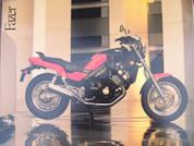 Yamaha Fazer brochure catalog