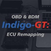 IGT-R Stage 1 OBD Remap 1.0 EcoBoost