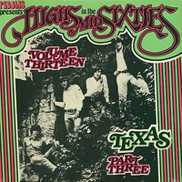 HIGHS IN THE MID 60's - Vol 13: TEXAS 3   ( Texas garage rarities ) - Comp LP