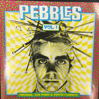 PEBBLES - Vol 01 -(RARE 60s GARAGE PSYCH!)  Comp CD