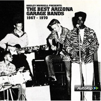 BEST ARIZONA GARAGE BANDS 1967-1970 -w 20 page booklet-  COMP CD