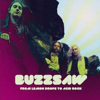 BUZZSAW    - FROM LEMON DROPS TO ACID ROCK (DOUBLE LP 70s garage psych w liners) -  LP