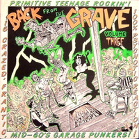 BACK FROM THE GRAVE  - Vol  3  GATEFOLD   (17 primitive 60s  punkers )  -   COMP LP