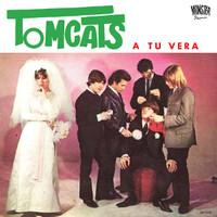 TOMCATS/LOS JUNIOR'S - A Tu Vera/Te Fuiste  (60s nuggets fuzz psych) 45 RPM
