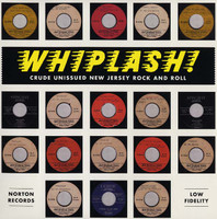 WHIPLASH!  -Crude Unissued New Jersey Rock and Roll-  COMP LP
